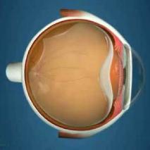 """Блог сайта """"Московская Офтальмология"""" - все о диагностике и ..."""